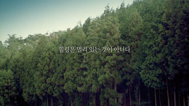 효성해링턴 플레이스 광고의 시작에 사용된 편백나무 숲의 모습입니다.
