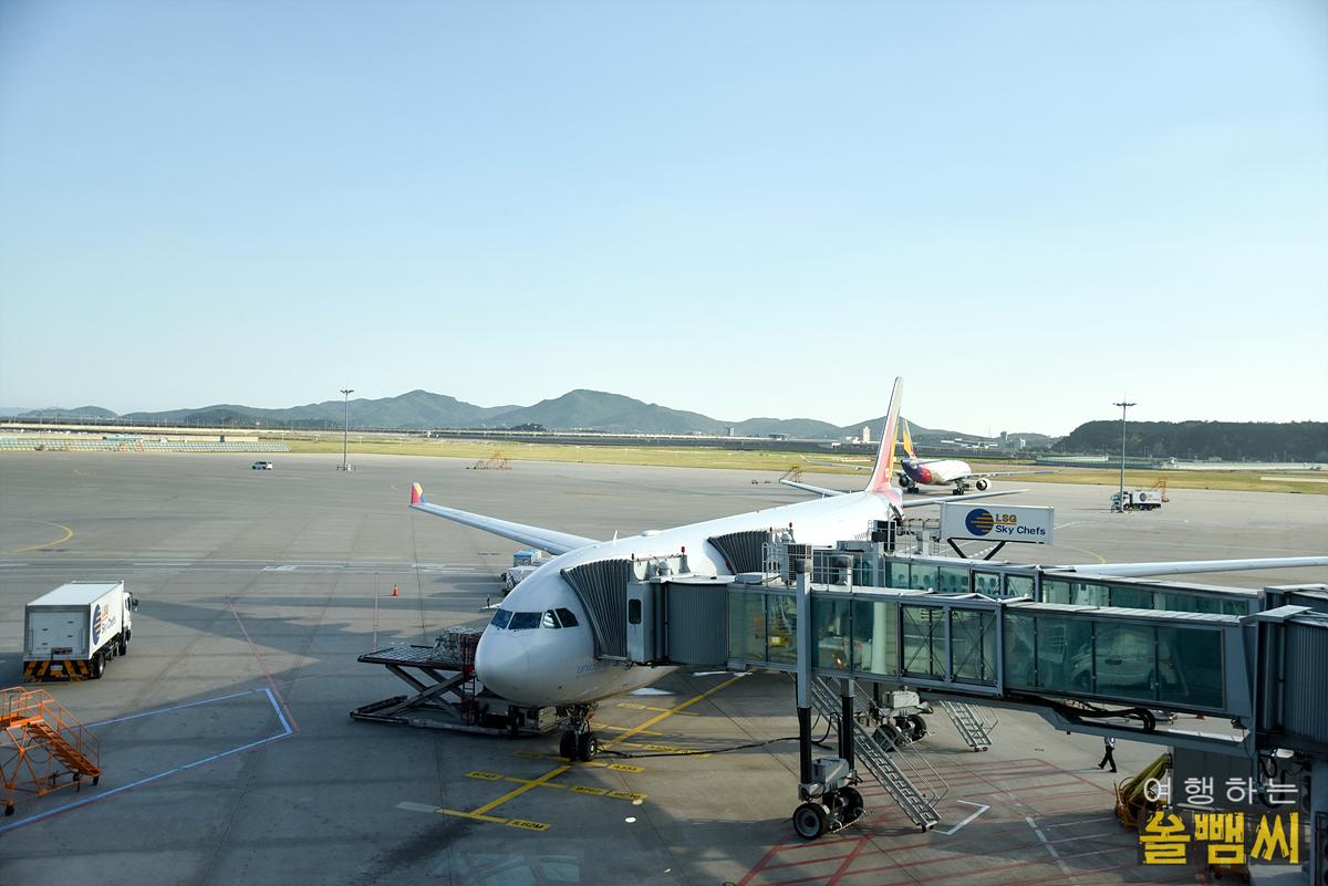 아시아나항공 비행기