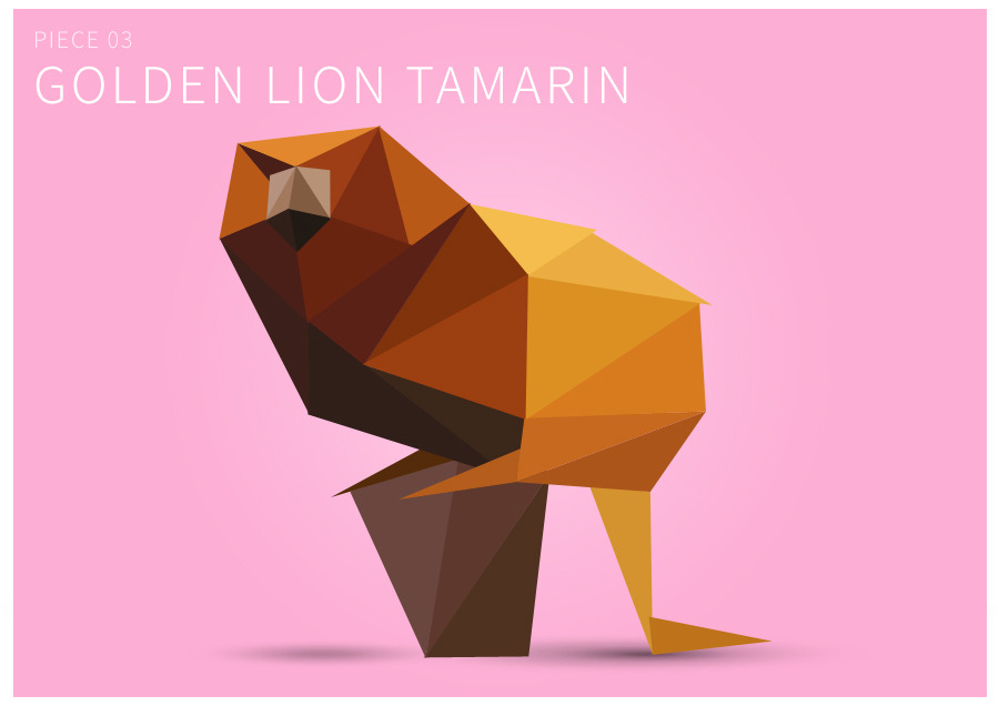 Piece 03 Golden lion tamarin