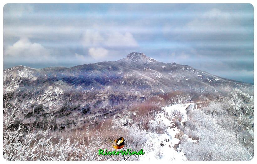눈덮인 금정산 고당봉