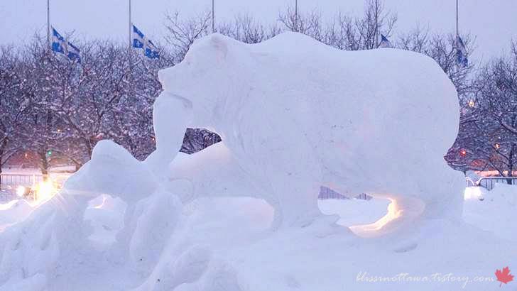북극곰이 물고기 잡는 모습입니다