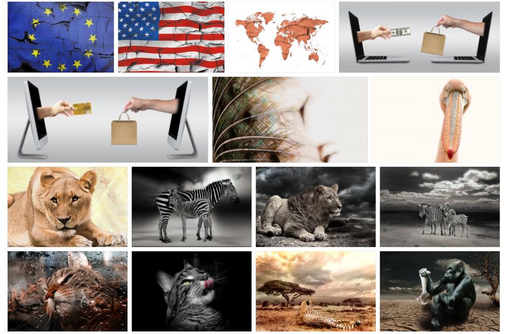 저작권 걱정없는 무료 고화질 이미지 다운로드 사이트 : PliXS