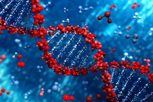 공룡 DNA