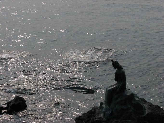 바위위에 인어가 앉아있내요