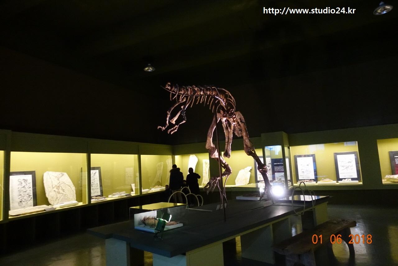 공룡 화석