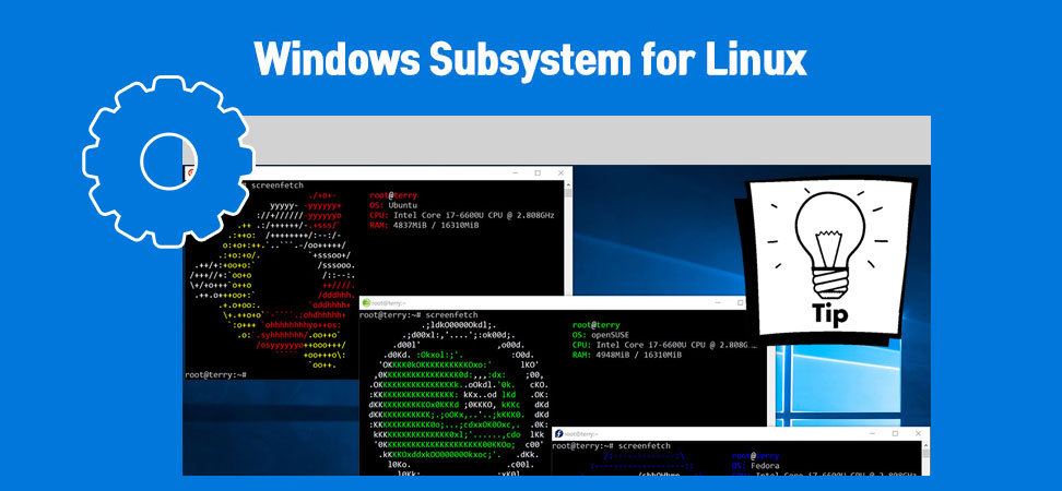 Windows Subsystem for Linux 팁