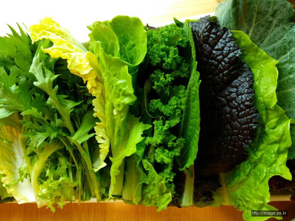 각종 쌈 채소와 함께 먹는 우렁쌈밥