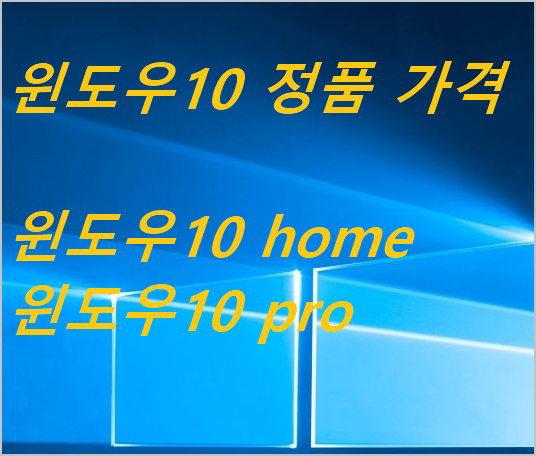 윈도우10 정품 가격