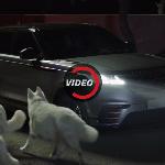 랜드로버의 신차 '레인지로버 벨라' 영상
