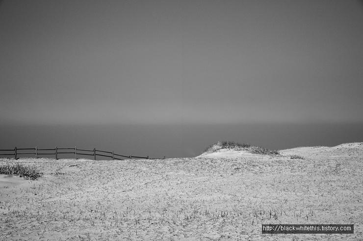 사구沙丘의 경계